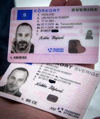 Swedish driving license
