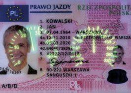 Buy Polish Drivers License That Work