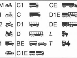 Germany Driving LicGerman Driving License Categoriesense Categories